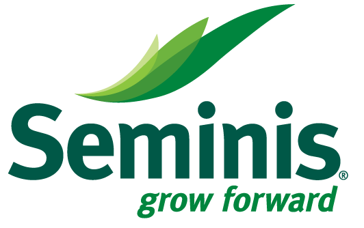 Seminte de legume Seminis